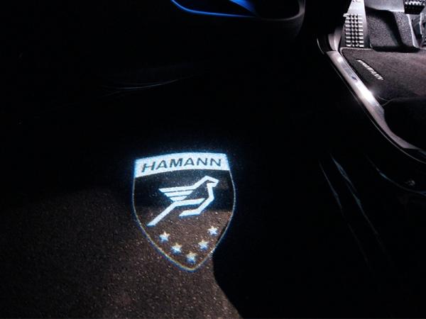 LED Türeinstiegsbeleuchtung mit HAMANN-Logo